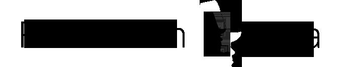 fundacion goya